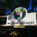 Wild bird sanctuary on route; interesting place to see tropical birds receiving rehab. (No charge, donations welcome)