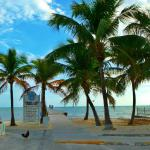 Public beach around corner from DoubleTree Hotel Key West-wild roosters love bikers